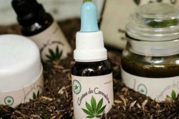 Lo que piensa el gobierno sobre la aprobación del consumo de marihuana medicinal